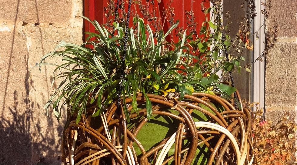 cache pot en osier brut por suspension fleurs